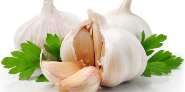 garlic-09